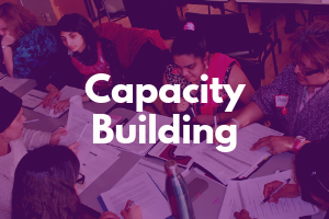 Link to Capacity Building